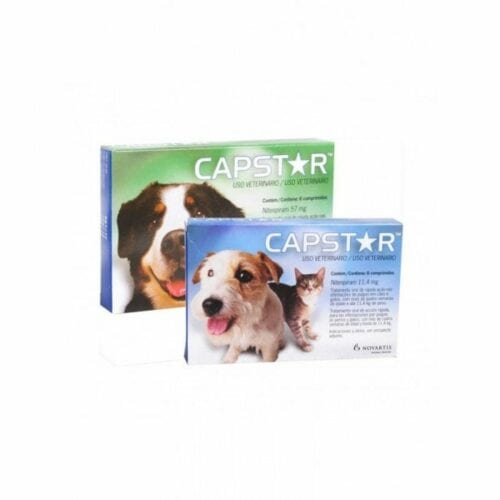 CAPSTAR 11,4 MG CHAT CHIEN CPR BT6