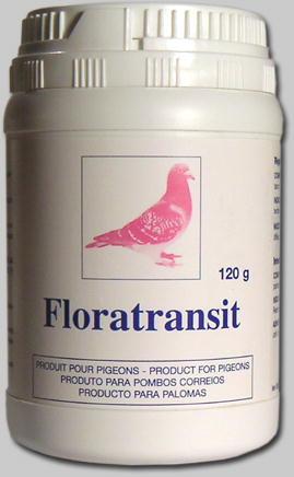 Régulateur intestinal pour pigeon, Floratransit normalise la consistance des fientes et restaure la flore digestive.