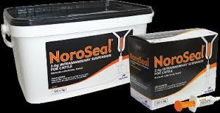 noroseal